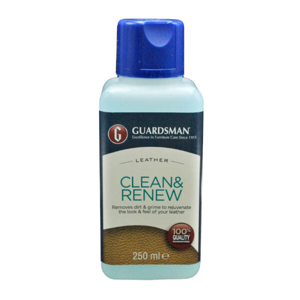 Guardsman clean and renew cleaner